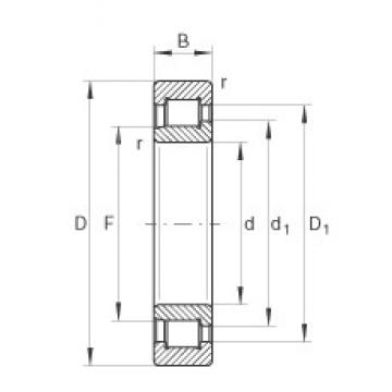 110 mm x 240 mm x 80 mm  INA SL192322-TB cylindrical roller bearings