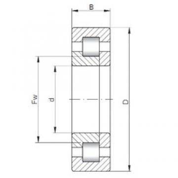110 mm x 240 mm x 80 mm  ISO NUP2322 cylindrical roller bearings