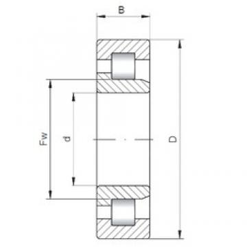 110 mm x 240 mm x 80 mm  ISO NJ2322 cylindrical roller bearings