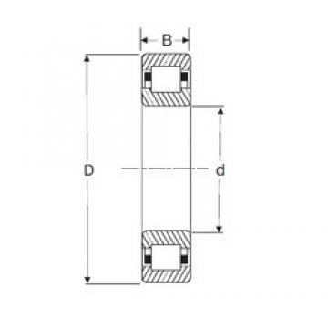 110 mm x 200 mm x 38 mm  SIGMA NUP 222 cylindrical roller bearings